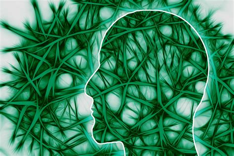 Adderall Uses And Effects On The Brain: How ADHD